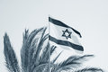 Flag of israel s float on the wind against a sky Stock Photography