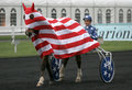 Flag parade,Prix d'Amérique, Vincennes, 2007 Stock Photo