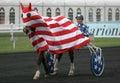 Flag parade,Prix d'Amérique, Vincennes, 2007 Stock Photo