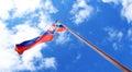 Flag of Slovakia on pole