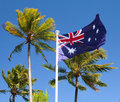 Flag in tropical australia with palm trees Stock Image