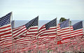 Flags Fly For Victims Of 9/11 ...