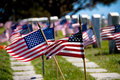 Flags and Headstones Stock Photos