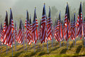 Flags in the Healing Fields for 9/11 Royalty Free Stock Photos