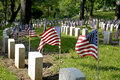 Flags and Tombstones Royalty Free Stock Photo