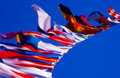 Flags in the Wind Royalty Free Stock Photo