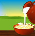 Flakes corn or wheat in a bowl. Milk pouring from the jug a plat Royalty Free Stock Photo