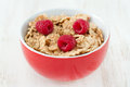 Flakes with fresh berries in red bowl Stock Photography