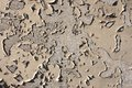 Flaking front color an old sandy with wall Royalty Free Stock Photo