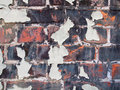 Flaking paint on old brick wall detail of ageing with decayed pointing and peeling Stock Image