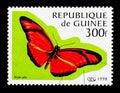 Flambeau (Dryas julia), Butterflies serie, circa 1998 Royalty Free Stock Photo