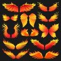 Flame bird fire wings fantasy feather burning blaze fly blazing danger flare glow fiery burn hot art vector illustration