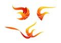 Flame bird logo, phoenix symbol design