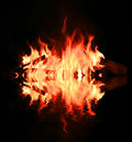Flame of fire with water reflection in darkness Royalty Free Stock Photos