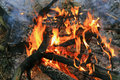Flame of firewood in camp fire Royalty Free Stock Photo