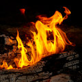 Flame tips on the firewood. Stock Photo