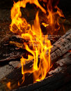 Flame tips on the firewood. Stock Photography