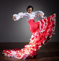 Flamenco dancer in beautiful dress Royalty Free Stock Photo