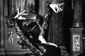 Flamenco Royalty Free Stock Photo