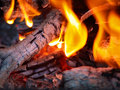 Flames and Embers Royalty Free Stock Photography