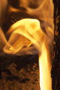 Flames on wood embers detail Stock Photography