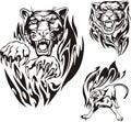 Flaming big cats. Royalty Free Stock Image