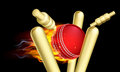 Flaming Cricket Ball Hitting Wicket Stumps