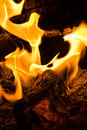 Flaming Logs Royalty Free Stock Image