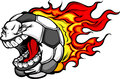 Flaming Soccer Ball Screaming Face Cartoon Stock Photography