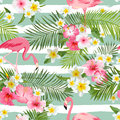 Flamingo Background. Tropical Flowers Background