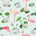 Flamingo Bird And Waterlily Fl...