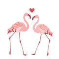 Flamingo Birds Couple Heart Lo...