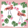 Flamingo birds and palm leaves Vector card