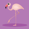 Flamingo cute on purple background with shadow effect Stock Image