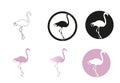 Flamingo minimal vector illustration