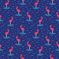 Flamingo seamless pattern with pink in vector Royalty Free Stock Photography