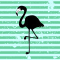 Flamingo on stripey background silhouette Royalty Free Stock Image