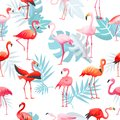 Flamingo vector tropical pink flamingos and exotic bird with palm leaves illustration set of fashion birdie isolated on Royalty Free Stock Photo