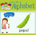 Flashcard alphabet P is for peapod Royalty Free Stock Photo