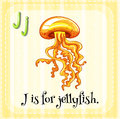 Flashcard letter J is for jellyfish Royalty Free Stock Photo