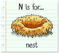 Flashcard letter N is for nest