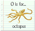 Flashcard letter O is for octopus Royalty Free Stock Photo
