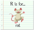 Flashcard letter R is for rat Royalty Free Stock Photo