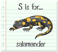 Flashcard letter S is for salamander Royalty Free Stock Photo