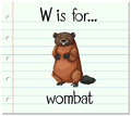 Flashcard letter W is for wombat