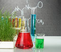 Flasks with colorful liquids in chemistry laboratory Royalty Free Stock Images