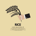 Flat Design Rice Ear In Hand Royalty Free Stock Photo