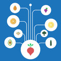 Flat Icons Citrus, Salad, Pawpaw And Other Vector Elements. Set Of Dessert Flat Icons Symbols Also Includes Salad, Bulb