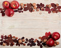 Flat lay frame of autumn crimson leaves, hazelnuts, walnuts and