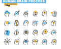 Flat line icons set of human brain process Royalty Free Stock Photo